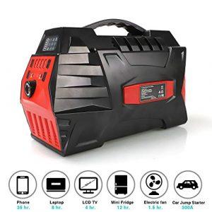 TIANQING Générateur de Courant portatif 500 W, Bloc d'alimentation Rechargeable, avec 4 Ports USB, 2 Ports CA, adapté aux sauvegardes d'urgence en Mode PPC ou Domestique [Classe énergétique A],Orange